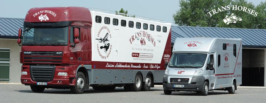 transport chevaux toulouse revia multiservices. Black Bedroom Furniture Sets. Home Design Ideas